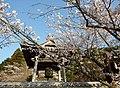 Kiyotakizi04.jpg