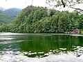 Krottensee Sankt Gilgen I.jpg