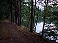 Kunstteich - panoramio.jpg