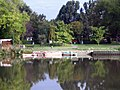 Kurca, Szentes 2013-09-22, Csendes kikötő. - panoramio.jpg