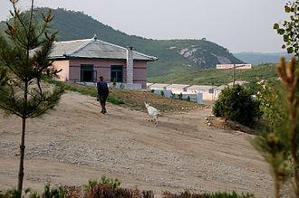 Sinwon County - A farm in Kyenam-ri, Sinwŏn county.