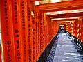 Kyoto Schrein Fushimi-Inari-taisha Torii 13.jpg