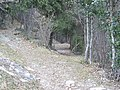 La strada del Bosco - panoramio.jpg
