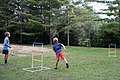Ladder Ball Striking the Upper Ladder 8960 (9681610518).jpg