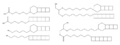 Ladderane lipids of anammox bacteria.png