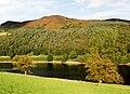 Ladybower Tor - geograph.org.uk - 562418.jpg