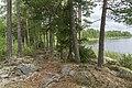 Lake Gisslaren, hiking trail Upplandsleden, Sweden 12.jpg