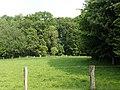Landschaftsschutzgebiet Wäldchen bei Buer Melle Datei 31.jpg