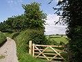 Lane near Exwell - geograph.org.uk - 463502.jpg