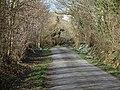 Lane to Cwmau, Carmarthen - geograph.org.uk - 1185548.jpg