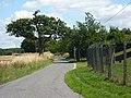 Lane to Wolves Farm - geograph.org.uk - 1438773.jpg