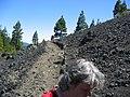 Lava gesteente (uitbarsting 1971) - panoramio.jpg