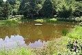 Lengshuikeng Ecological Pond 冷水坑生態池 - panoramio.jpg