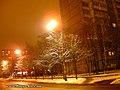 Liatoshinskiy str. at night - panoramio (1).jpg