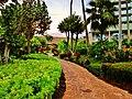 Lihue, Kauai, Hawaii - panoramio (42).jpg