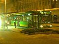 Linie NE10 (STOAG).jpg