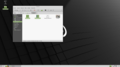 Linux-Mint-20-MATE-nemo-window.png