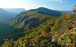 Udsigt fra Blue Ridge Parkway, en naturskøn led i Appalacherna i den vestlige del af delstaten.