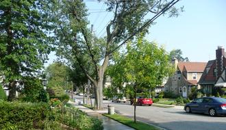 Little Neck, Queens - Residential street