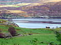 Loch Broom from Blarnalearoch - geograph.org.uk - 619348.jpg