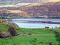 Loch Broom from Blarnalearoch - geograph.org.uk - 619348.jpg
