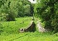 Locks, Somerset Coal Canal. - panoramio.jpg