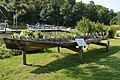Log canoe at RFM, angle.jpg