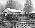 Loggers and mess hall and camp crew standing on raised walkway, Wynooche Timber Company, probably in Grays Harbor County, ca 1921 (KINSEY 1504).jpeg