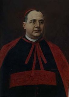 Luigi Tripepi