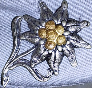 10th Panzer Division (Bundeswehr) - The Edelweiss badge of the German mountain infantry