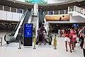 MC 澳門 Macau 外港客運碼頭 Outer Harbour Ferry Terminal visitors escalaotrs May 2018 IX2 05.jpg