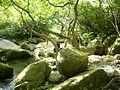 Ma On Shan Country Park 03.JPG