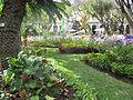 Madeira em Abril de 2011 IMG 1721 (5663179925).jpg