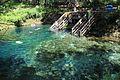 Madison Blue Springs State Park 12.jpg