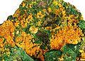 Malachite-Tyuyamunite-rad08-01b.jpg