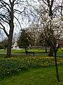Manor Park, Sutton, Surrey, Greater London - 6.jpg