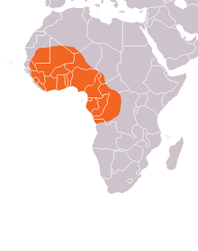 Mapa distribuicao Trichechus-2.PNG