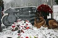 Marine K9 Lex at handler's graveside