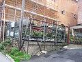 Market Gardener - geograph.org.uk - 1560779.jpg