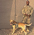 Marley and me 130513-A-DL887-002.jpg