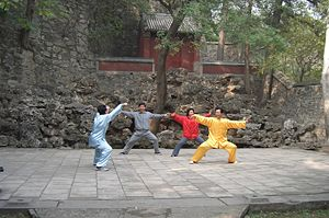 Styles of Chinese martial arts - Taijiquan, the best-known internal style of Chinese martial arts, being practiced at the Fragrant Hills Park, Beijing