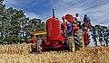 Massey Harris Harvesting.NZ. (10604702514).jpg