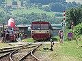 Masters of Rock 2010, nádraží, 810 na posíleném vlaku, celek.jpg