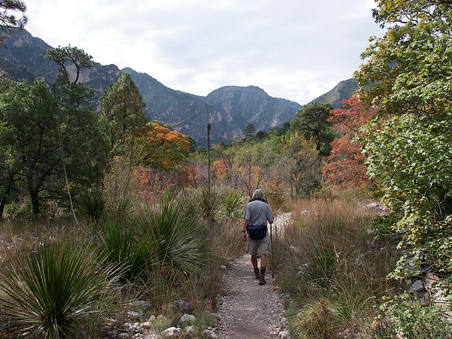 McKittrick Canyon Trail, in Guadalupe Mountains National Park