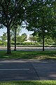 Median at 21st St SW and Independence Ave SW - Washington DC.jpg