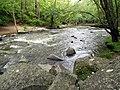 Mill Trail Umstead NC SP 4323 (6641044645) (2).jpg