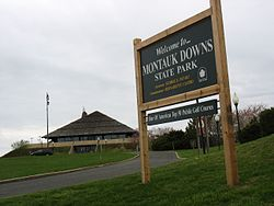 Montauk-downs.jpg