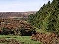 Moorland edge at Venford reservoir - geograph.org.uk - 595159.jpg