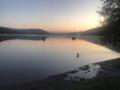 Morning at Lake Titisee.png