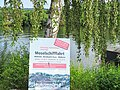 Moselschifffahrt Mülheim - Bernkastel-Kues - panoramio.jpg